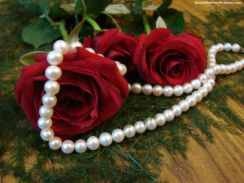 Download free photos of Pearls - 1